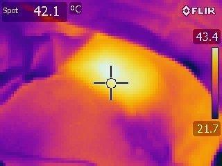 サーミタイトサーモグラフィ